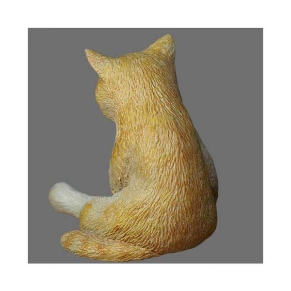 1/16 AN-01 Cat Set