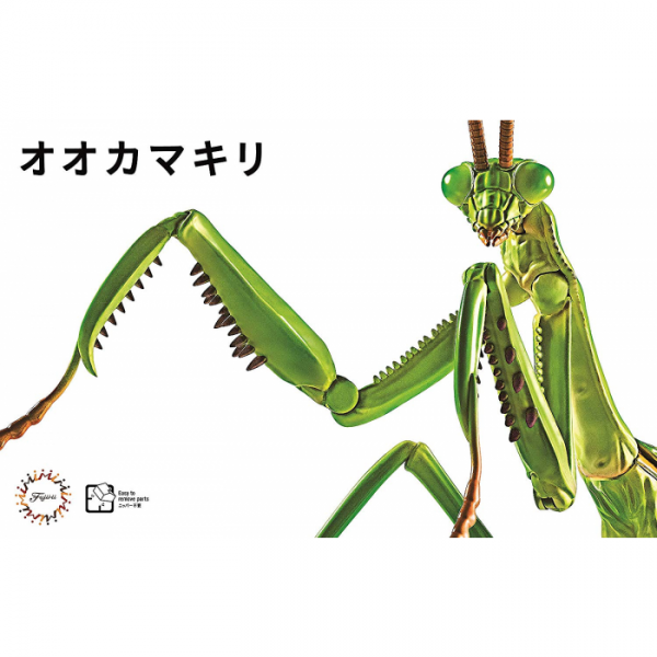 Living Thing Arc: Tenodera Aridifolia