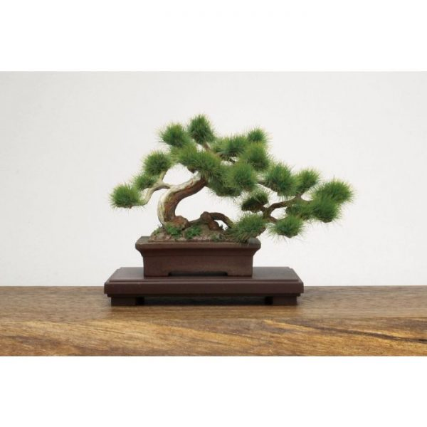 1/12 The Bonsai Plastic Kit #1