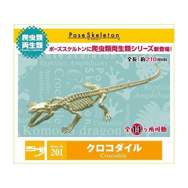 Reptiles Amphibians No.201 Crocodile
