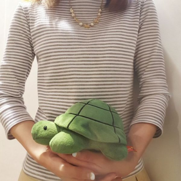 Bruna Family Plush Toy Turtle SS-size