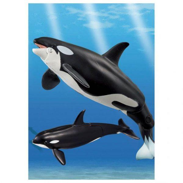 Ania AL-08 Killer Whale Family