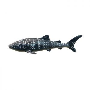 Whale Shark Soft Model