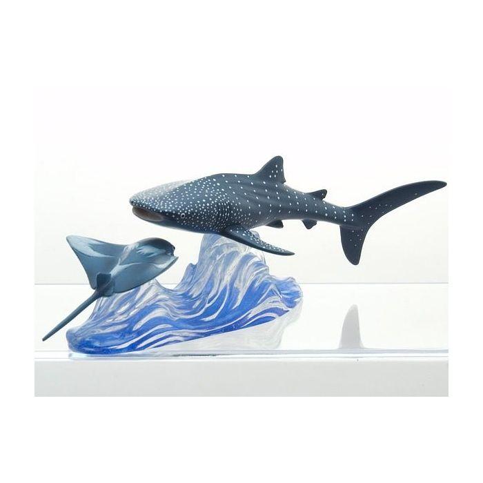 Whale Shark -Encounters-