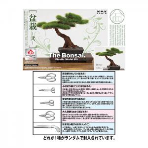 1/12 The Bonsai Plastic Model Kit -Two- w/Photo-Etched Scissors